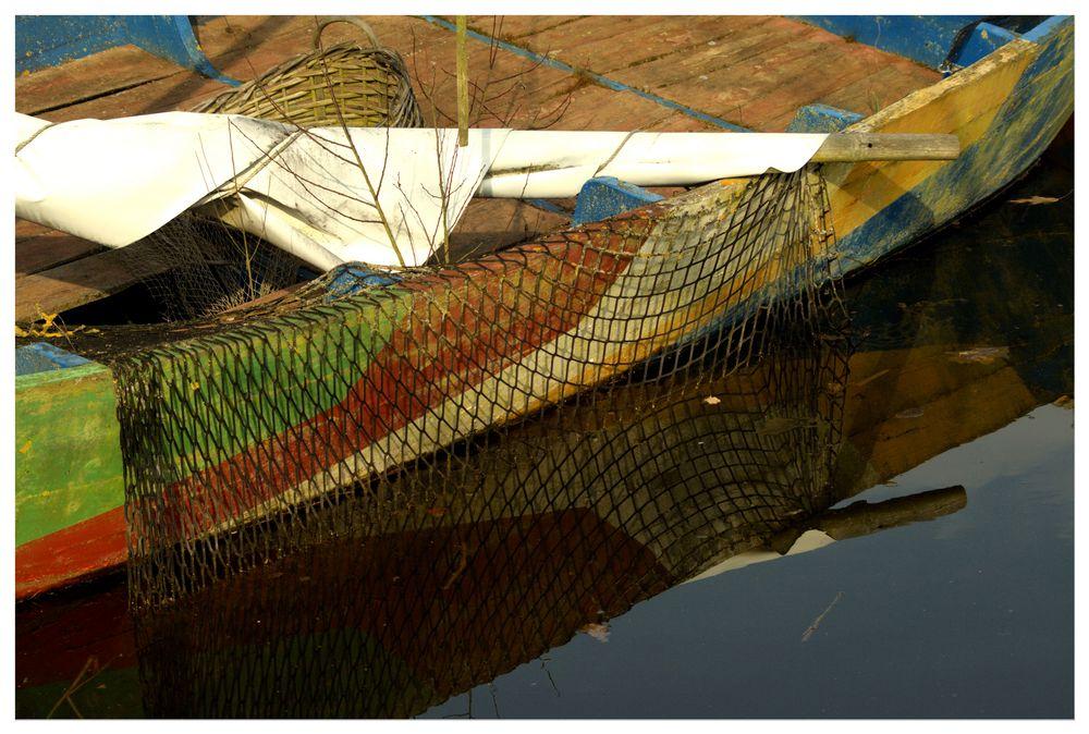 barca color