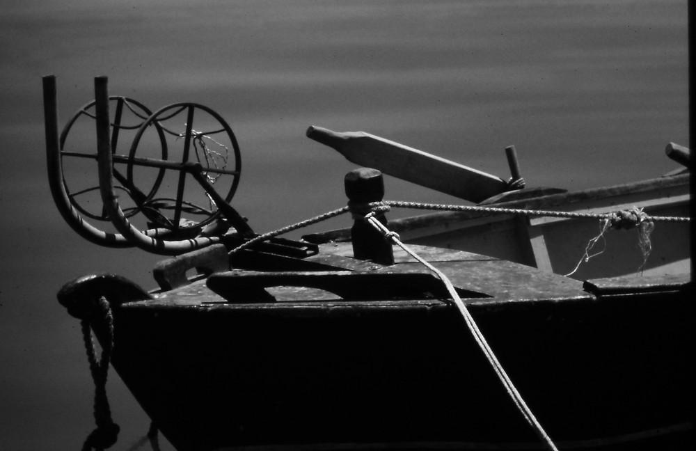 Barca da pesca