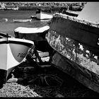 Barcas (Canarias)