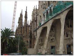 barcelona 15 / la sagrada familia