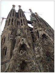 barcelona 18 / la sagrada familia