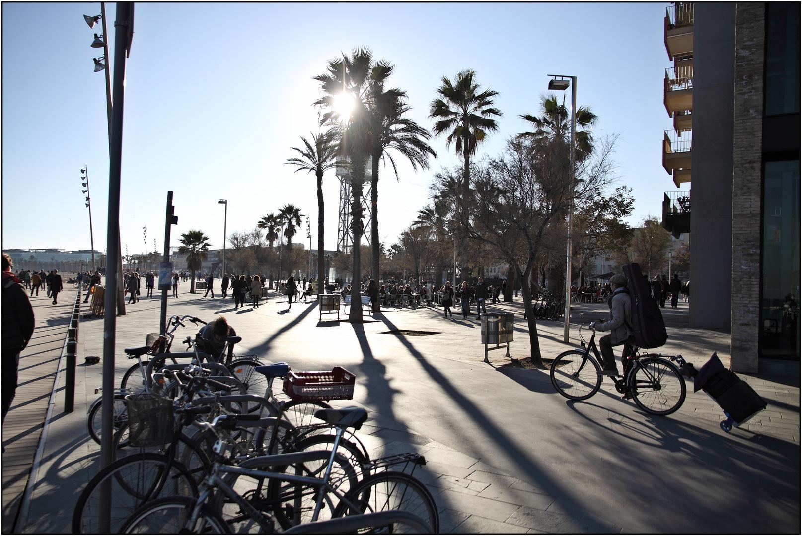 Barcelona, Boulevard, December 2013