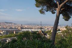 Barcelona Tag
