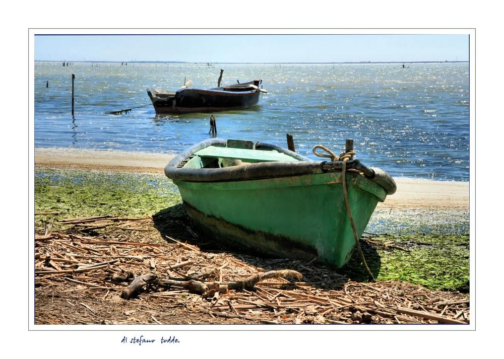 Barche.