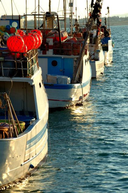 Barche in attesa