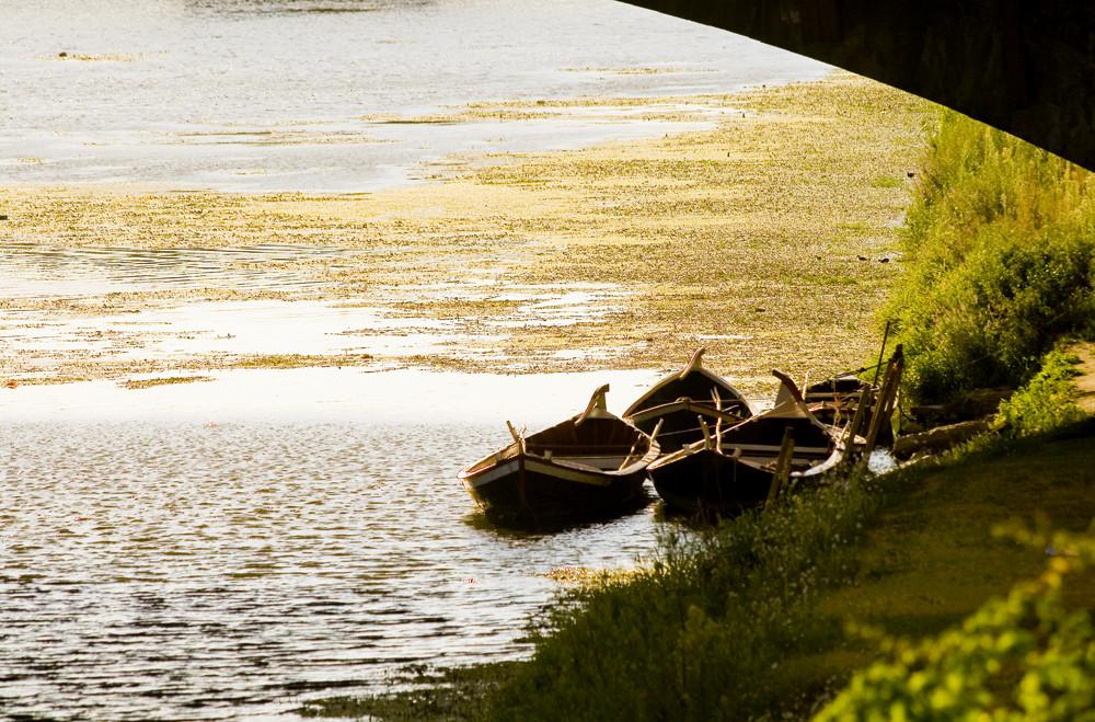 Barche sull'Arno 2