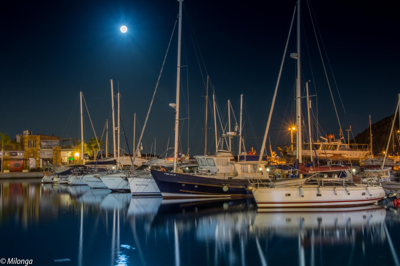 Barcos descansando bajo la luna llena
