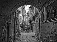 Bari street