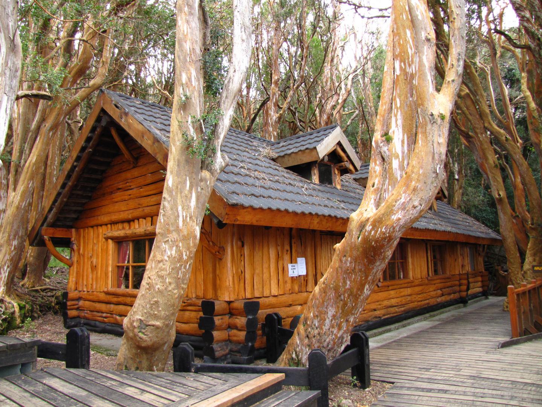 Bariloche - Bosque de Arrayanes - Argentina