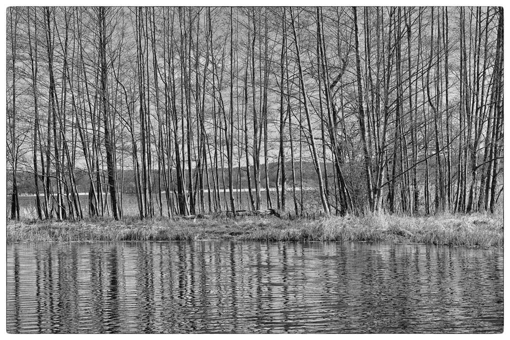 Barniner See