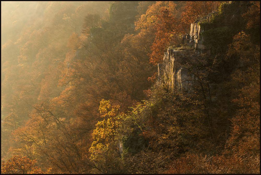 Barocke Herbstmalerei... (Hommage à Rembrandt...)