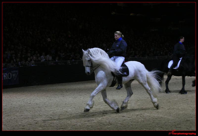 Barockpferdetag Equitana 2007