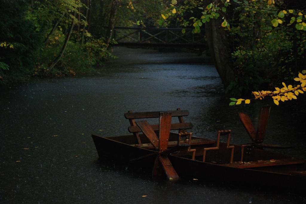 barque de léo en automne