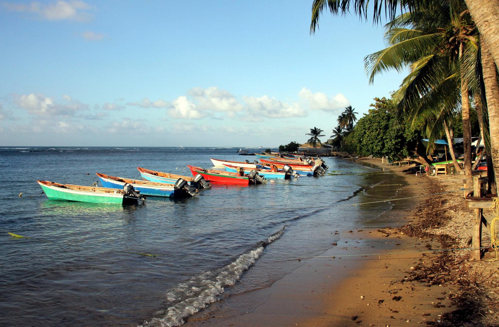 barques de pêche au repos