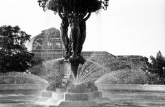 Bartholdi Fountain and Botanic Garden