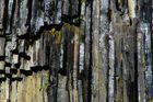 Basalt am Svartifoss
