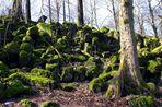 Basaltsäulen auf der Sachsenburg bei Oberalba Rhön