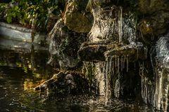 Basel, Botanischer Garten 09