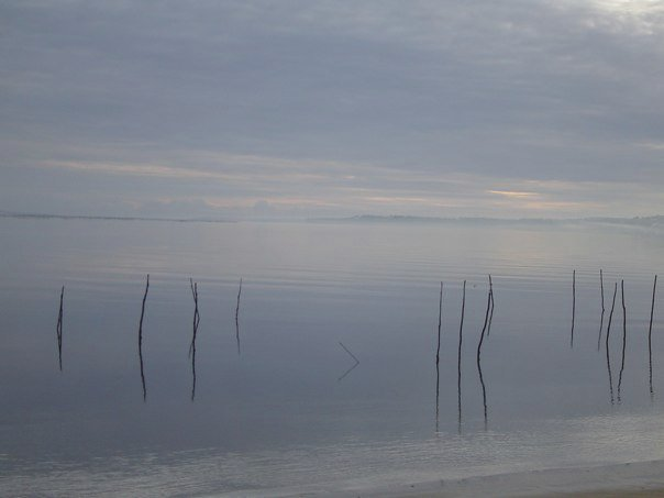 Bassin d'Arcachon surrealiste