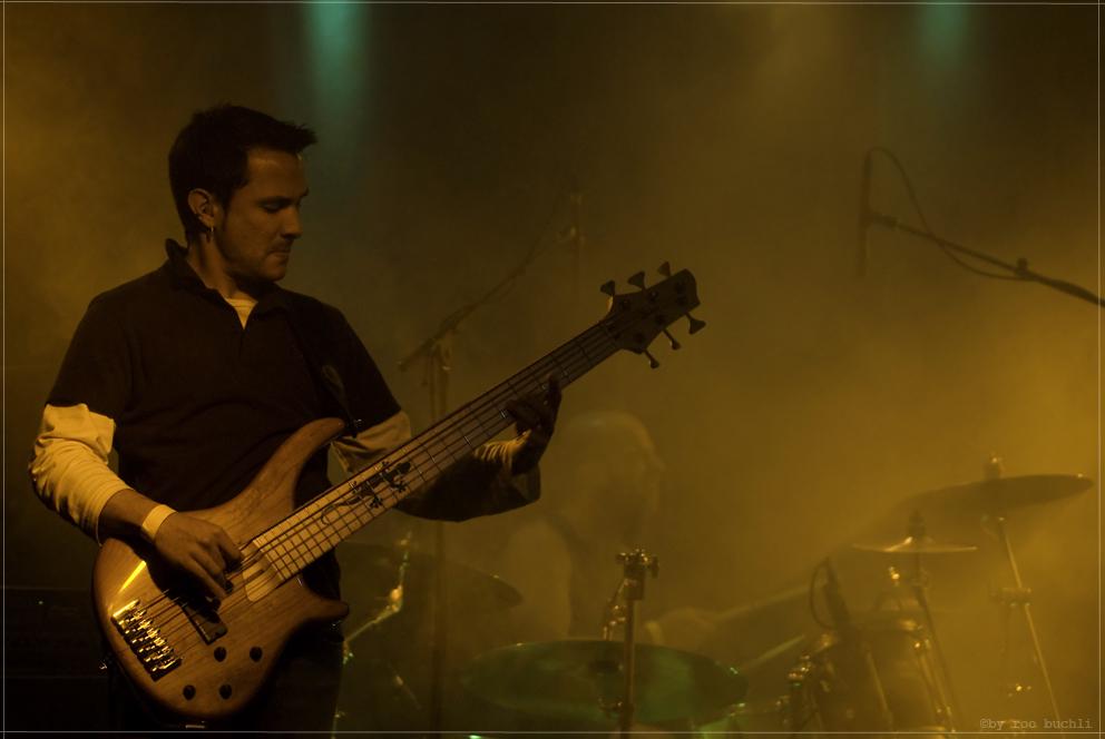 bassist sepia