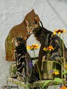 Bastet Statuen :)