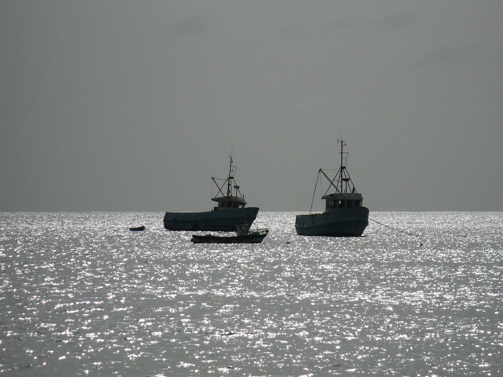 Bateaux de pêche au Cap-Vert
