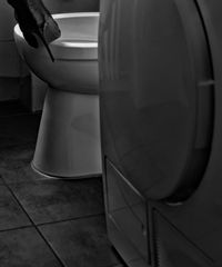 bathroom.jungle