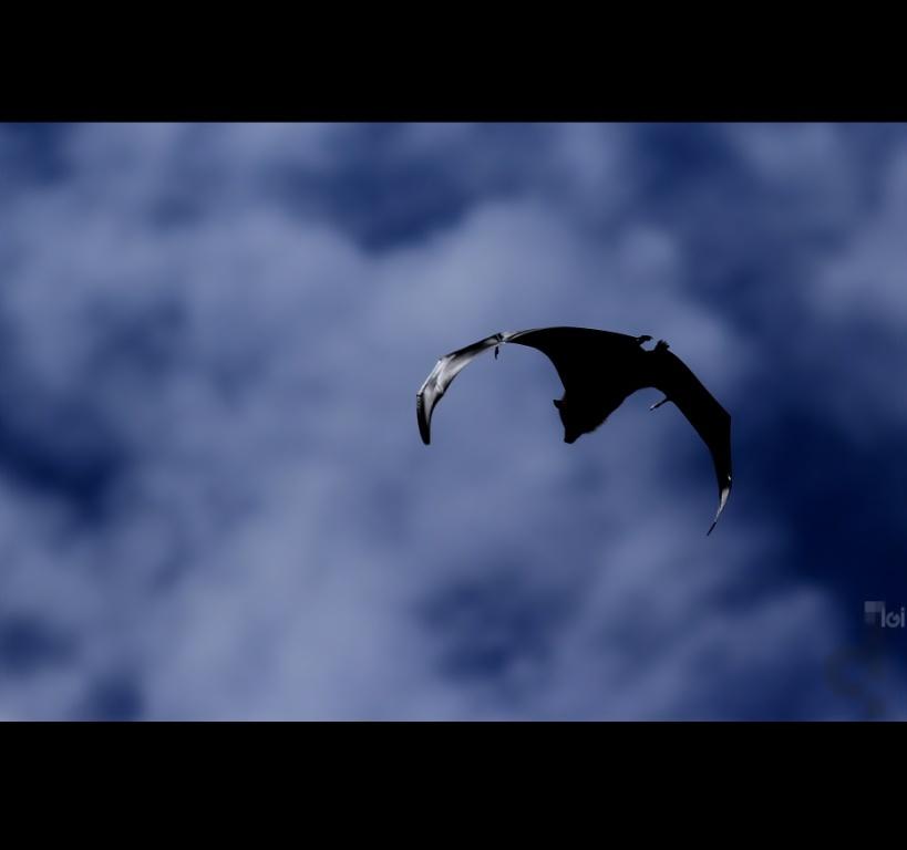 Batman Returns~