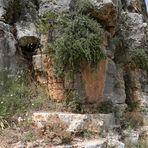 Battir -Steinformationen- -1-