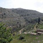 Battir  -Terrassengärten-