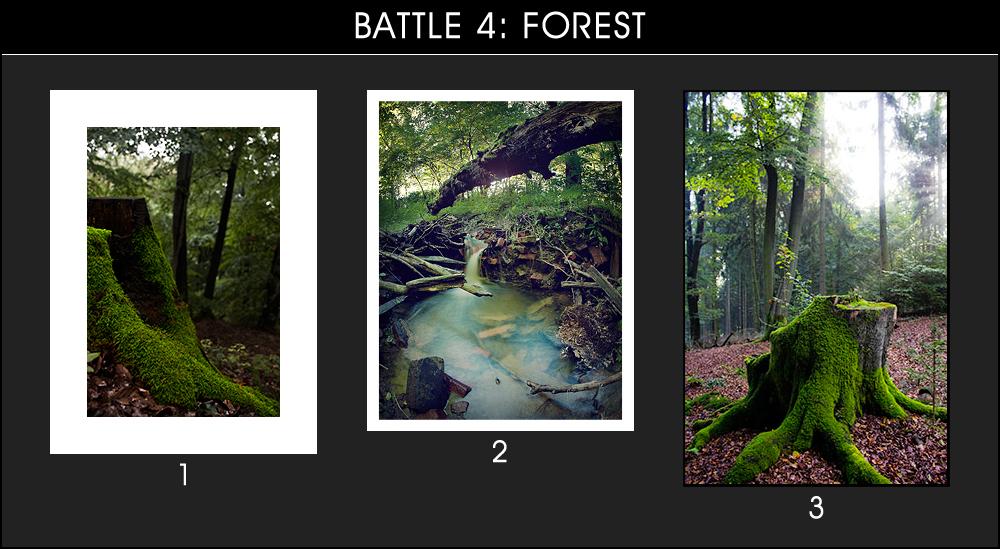 Battle 4: Forest