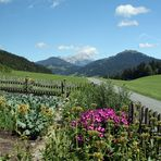 Bauerngarten