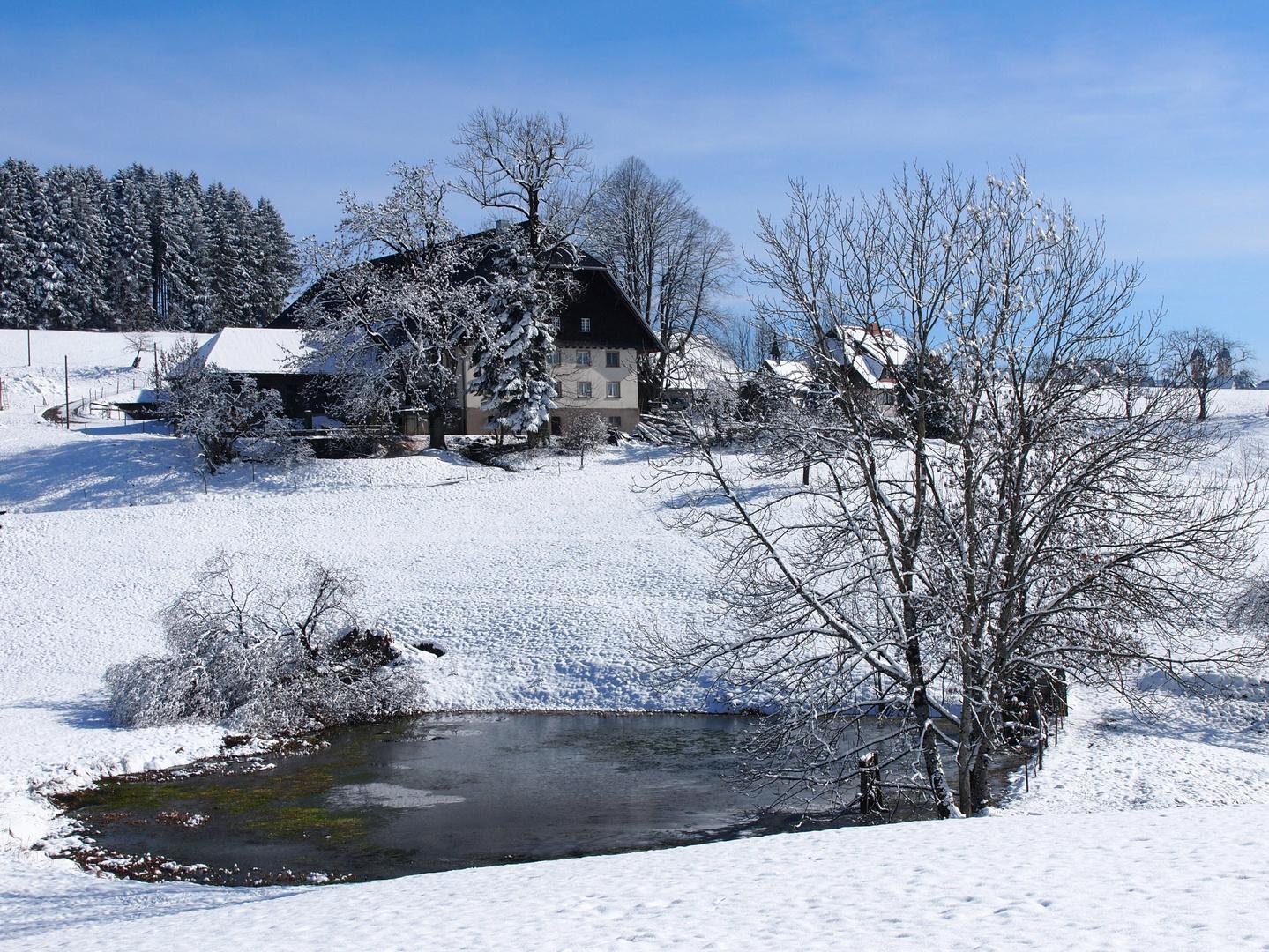Bauernhof und Teich