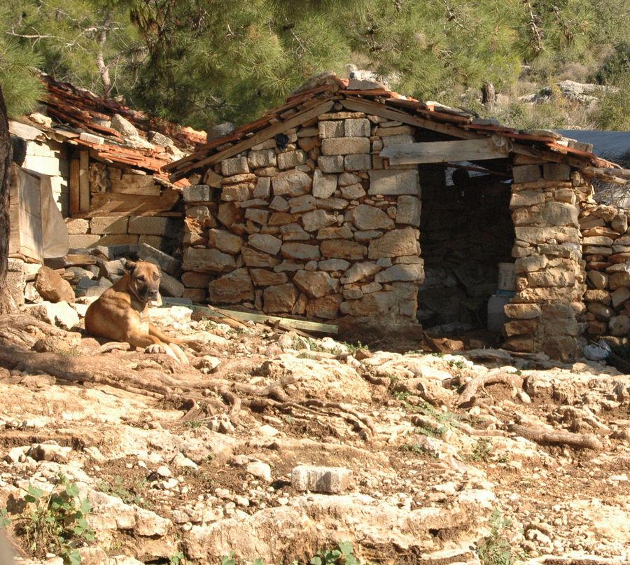 Bauernhütte