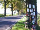 Baum an der B 158 bei Werneuchen