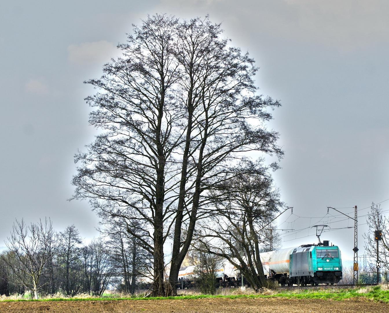 Baum mit Lokomotive