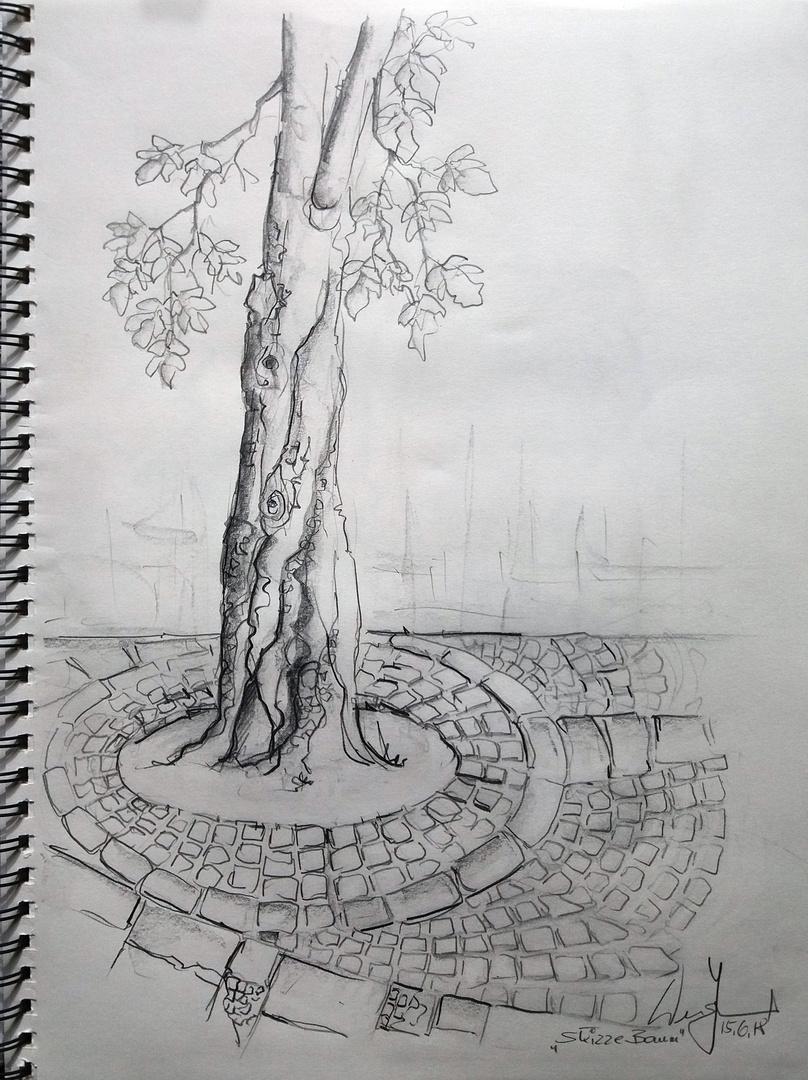 Baum mit Pflastersteinen...