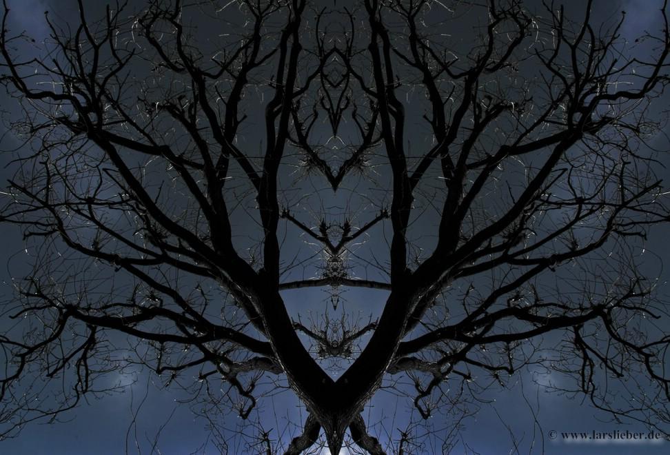 Baum oder Bäume?