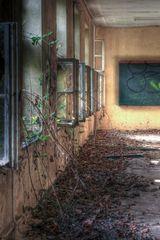 Baum-Schule