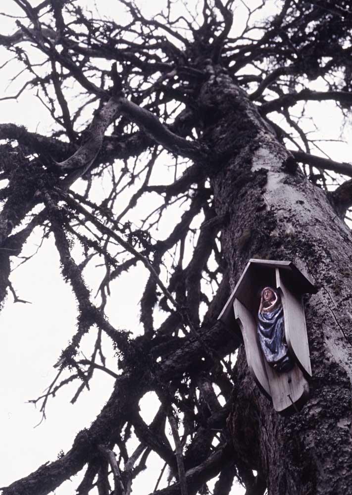 Baum-Tod