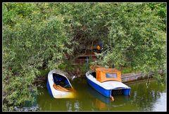 Baumgeborgene Boote