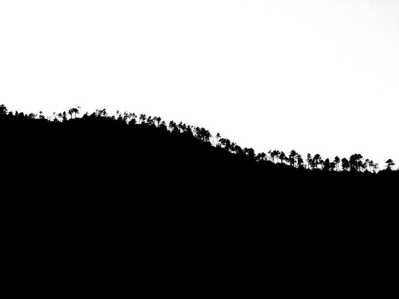 |Baumgruppe|