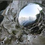 Baumkugelspiegel - Tree ball reflexions