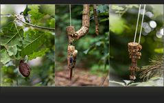 Baumschmuck und ein Waldungeheuer