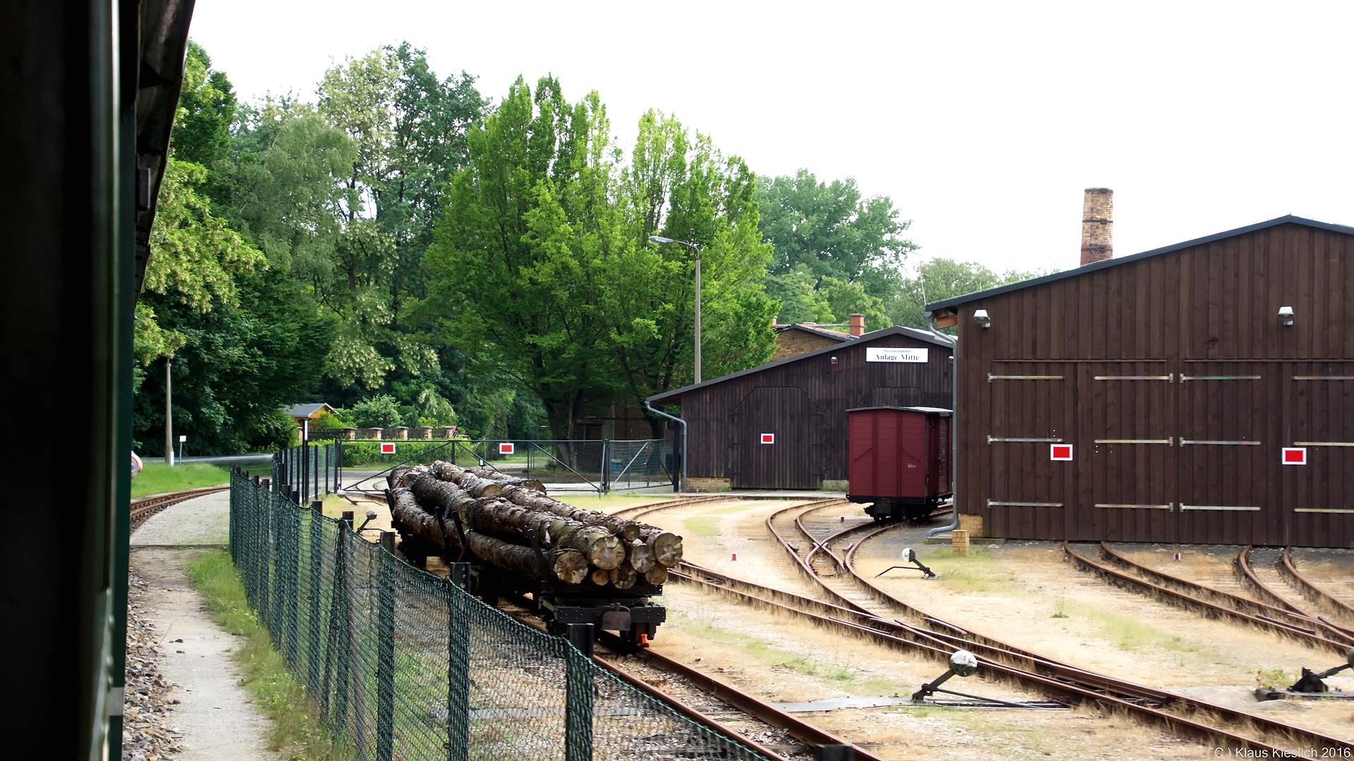 Baumstämme waren ein wichtiges Transportgut bei der Waldeisenbahn Muskau