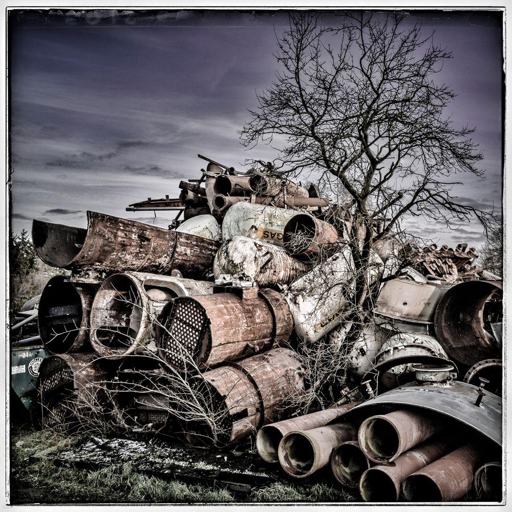 Baumtransformer