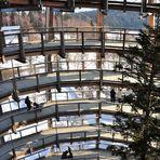 Baumturm von innen