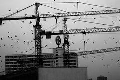Baustellenleben