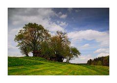 Bavarian Country - Bayrische Landschaften