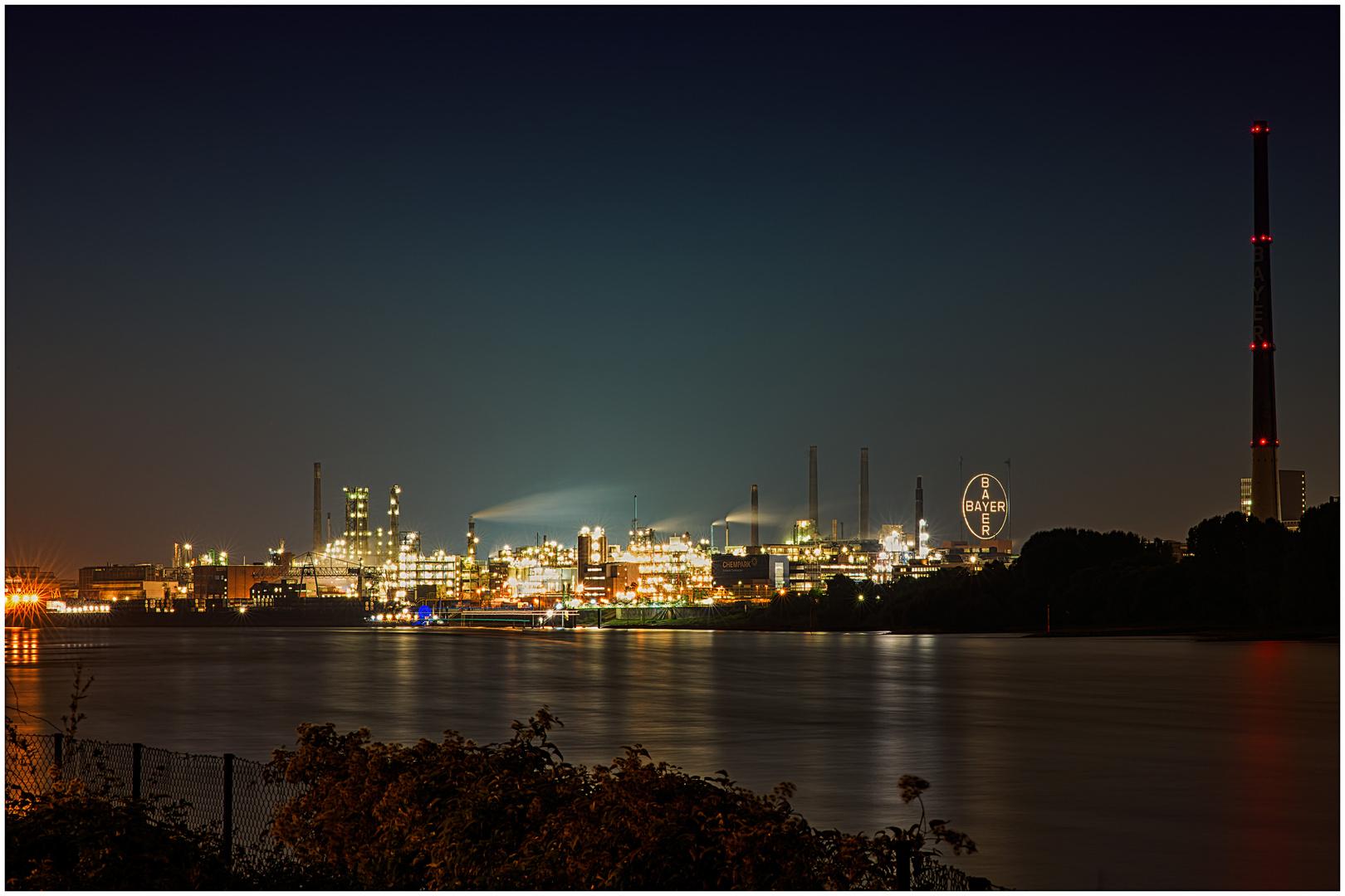 Bayer bei Nacht 2